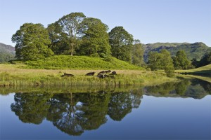 Lake District landsape stock images