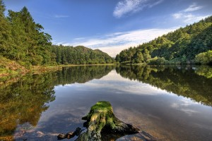 Image of Yew Tree Tarn, Coniston